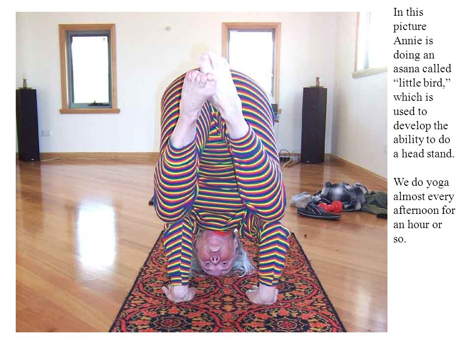 In this picture Annie is doing an asana called little bird, which is used to develop the ability to do a head stand.