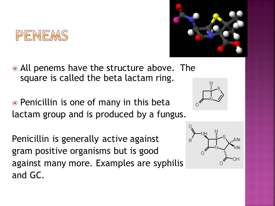  Penicillium chrysogeum is the organism which produces penicillin today.