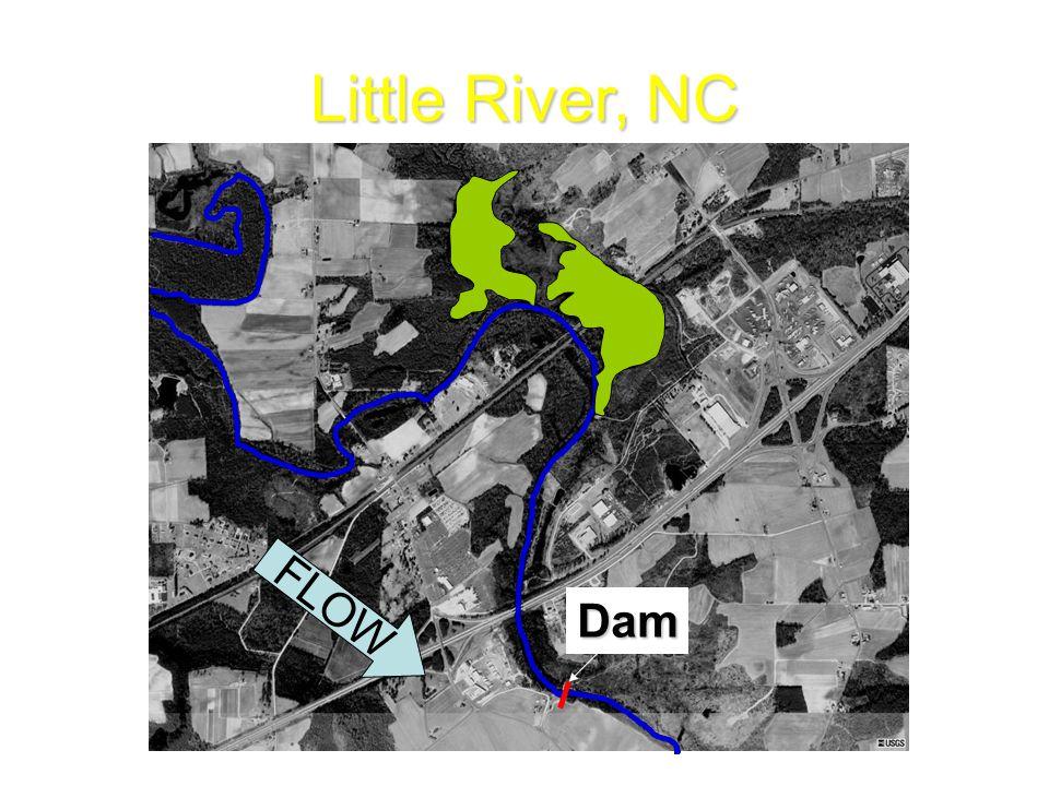 Little River, NC Dam FLOW