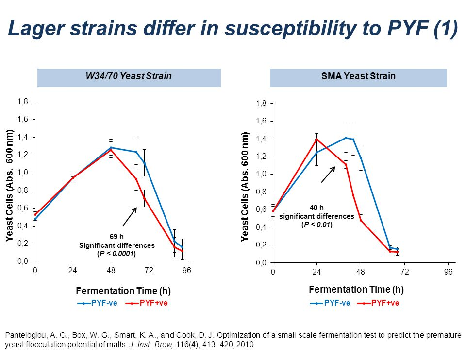W34/70 Yeast StrainSMA Yeast Strain 40 h significant differences (P < 0.01) Lager strains differ in susceptibility to PYF (1) Panteloglou, A. G., Box,