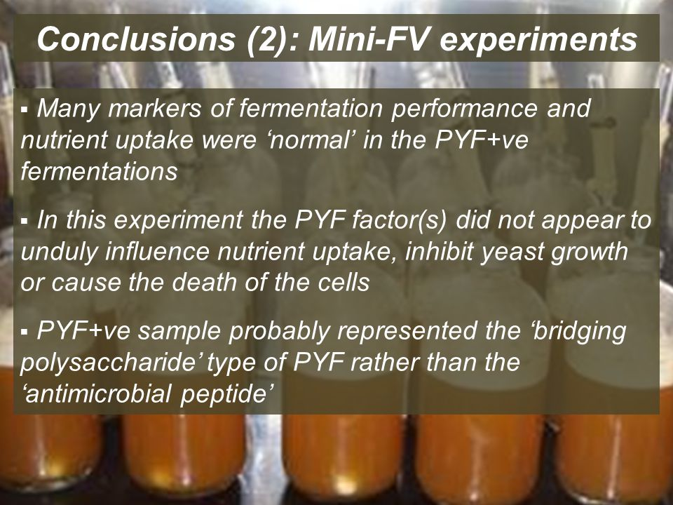 Conclusions (2): Mini-FV experiments  Many markers of fermentation performance and nutrient uptake were 'normal' in the PYF+ve fermentations  In this experiment the PYF factor(s) did not appear to unduly influence nutrient uptake, inhibit yeast growth or cause the death of the cells  PYF+ve sample probably represented the 'bridging polysaccharide' type of PYF rather than the 'antimicrobial peptide'