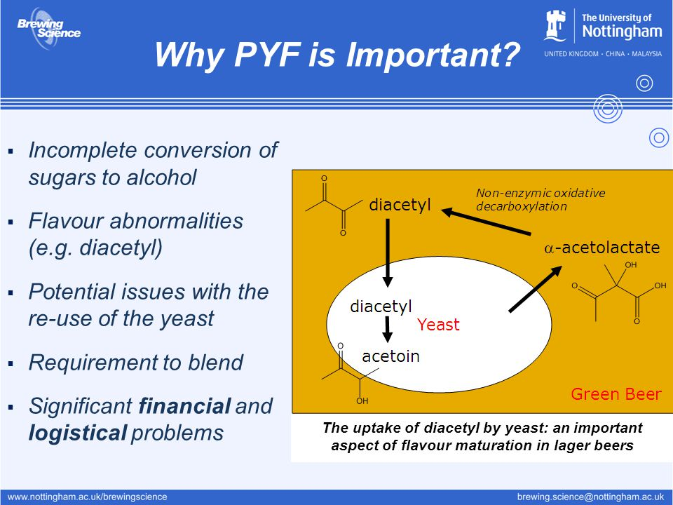 Why PYF is Important?  Incomplete conversion of sugars to alcohol  Flavour abnormalities (e.g. diacetyl)  Potential issues with the re-use of the y