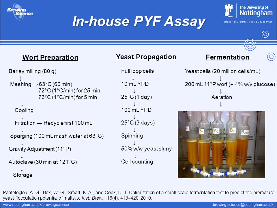 In-house PYF Assay Barley milling (80 g) ↓ Mashing → 63°C (60 min) 72°C (1°C/min) for 25 min 76°C (1°C/min) for 5 min ↓ Cooling ↓ Filtration → Recycle