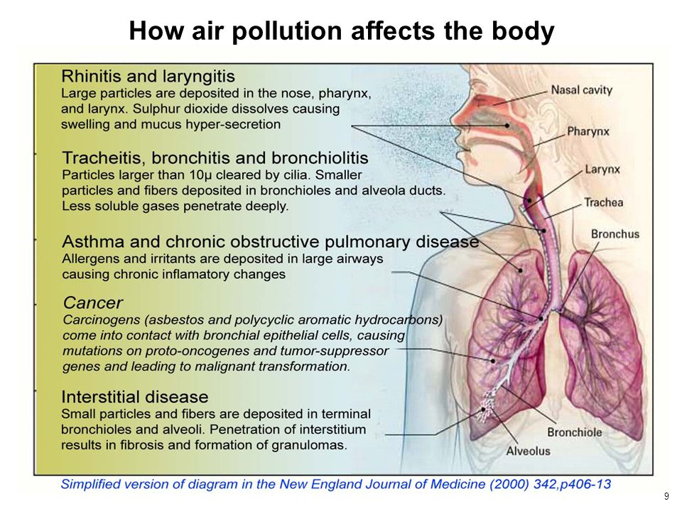 How air pollution affects the body 9