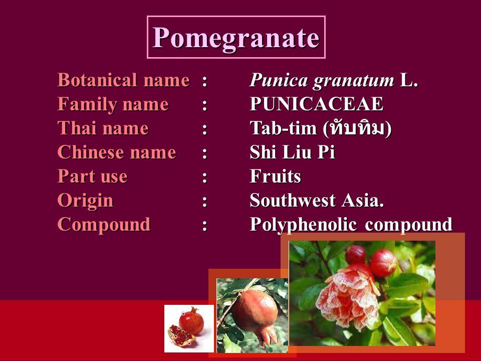 Botanical name: Punica granatum L.