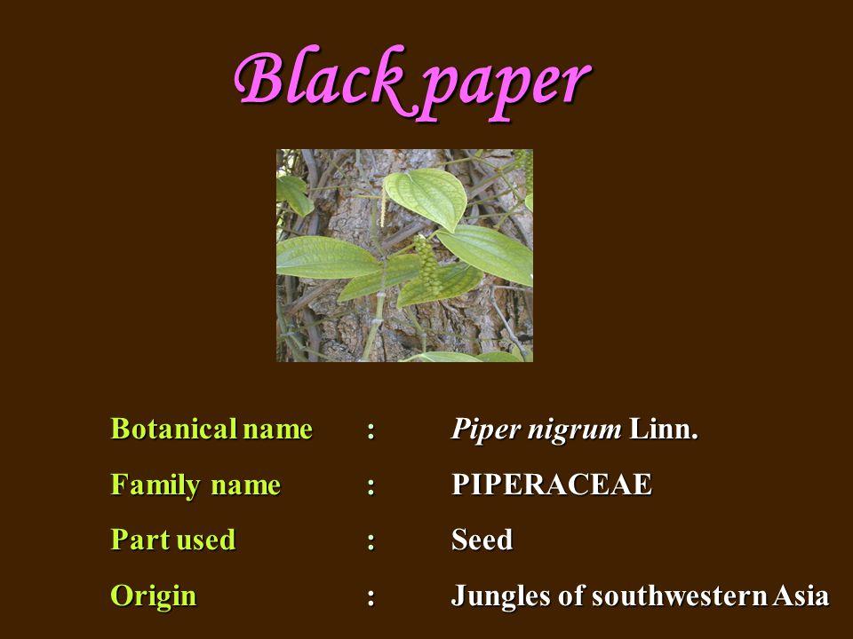 Botanical name : Piper nigrum Linn.