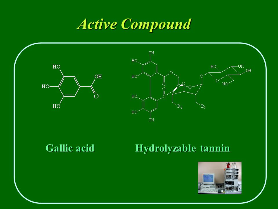 Active Compound Gallic acid Hydrolyzable tannin