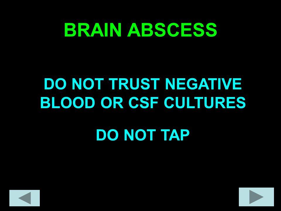 BRAIN ABSCESS DO NOT TRUST NEGATIVE BLOOD OR CSF CULTURES DO NOT TAP