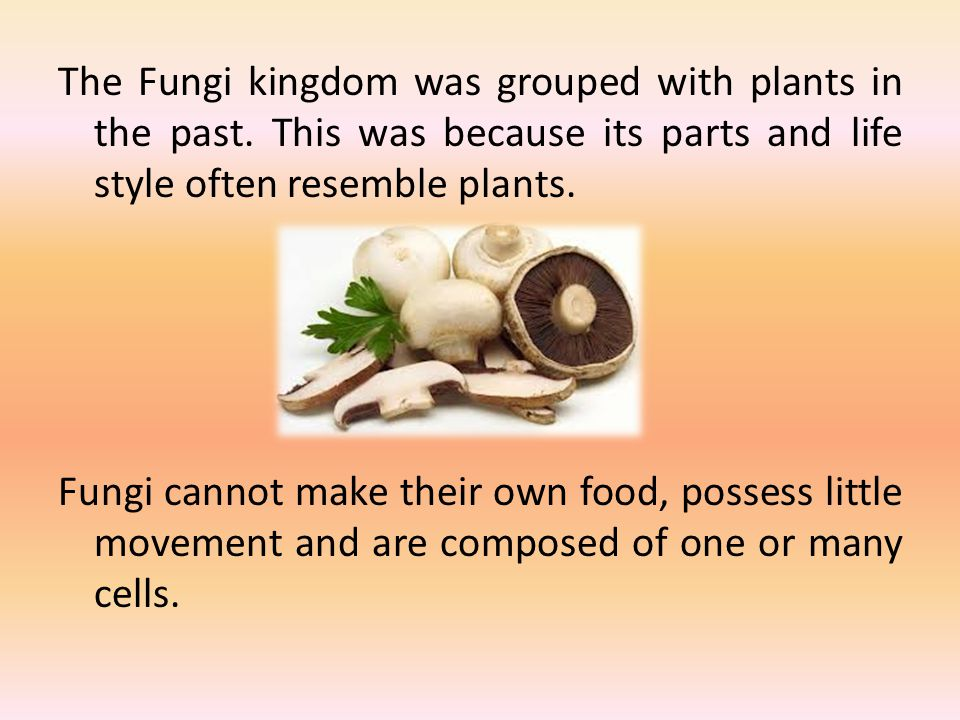 The Fungi kingdom was grouped with plants in the past. This was because its parts and life style often resemble plants. Fungi cannot make their own fo