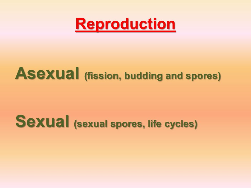 Reproduction Asexual (fission, budding and spores) Sexual (sexual spores, life cycles)