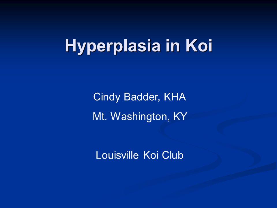 Hyperplasia in Koi Cindy Badder, KHA Mt. Washington, KY Louisville Koi Club