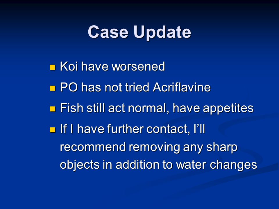 Case Update Koi have worsened Koi have worsened PO has not tried Acriflavine PO has not tried Acriflavine Fish still act normal, have appetites Fish still act normal, have appetites If I have further contact, I'll recommend removing any sharp objects in addition to water changes If I have further contact, I'll recommend removing any sharp objects in addition to water changes