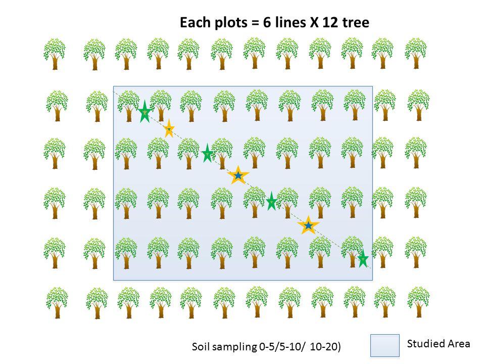Soil sampling 0-5/5-10/ 10-20) Each plots = 6 lines X 12 tree Studied Area Studied Area Studied Area