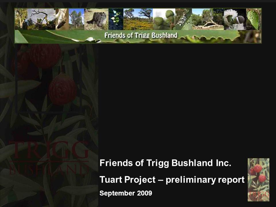 Friends of Trigg Bushland Inc. Tuart Project – preliminary report September 2009
