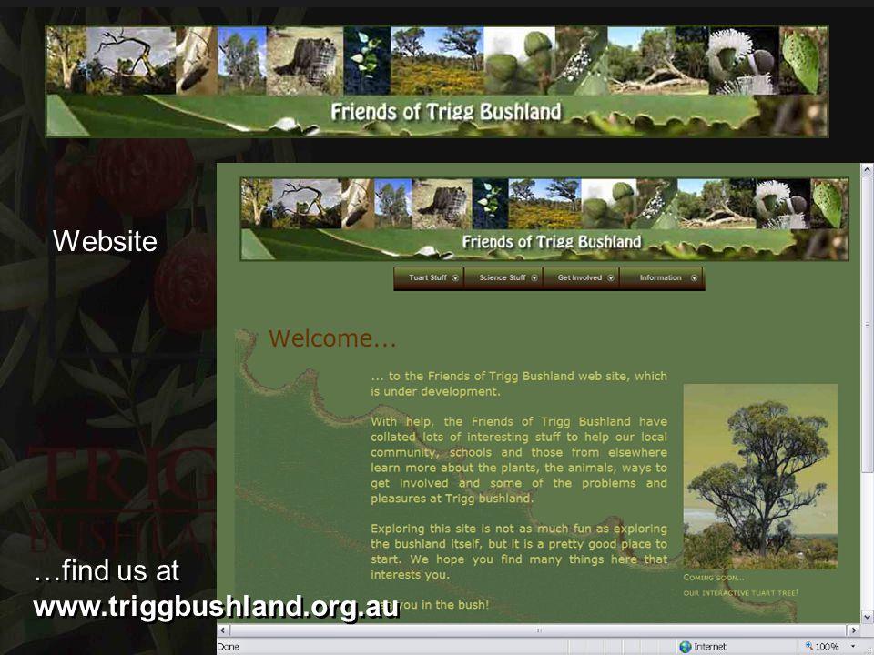 Website …find us at www.triggbushland.org.au