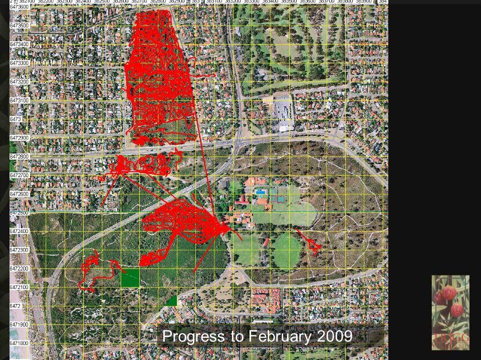 Progress to February 2009