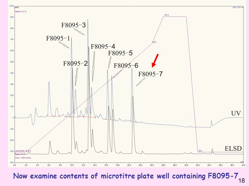 Now examine contents of microtitre plate well containing F8095-7 18