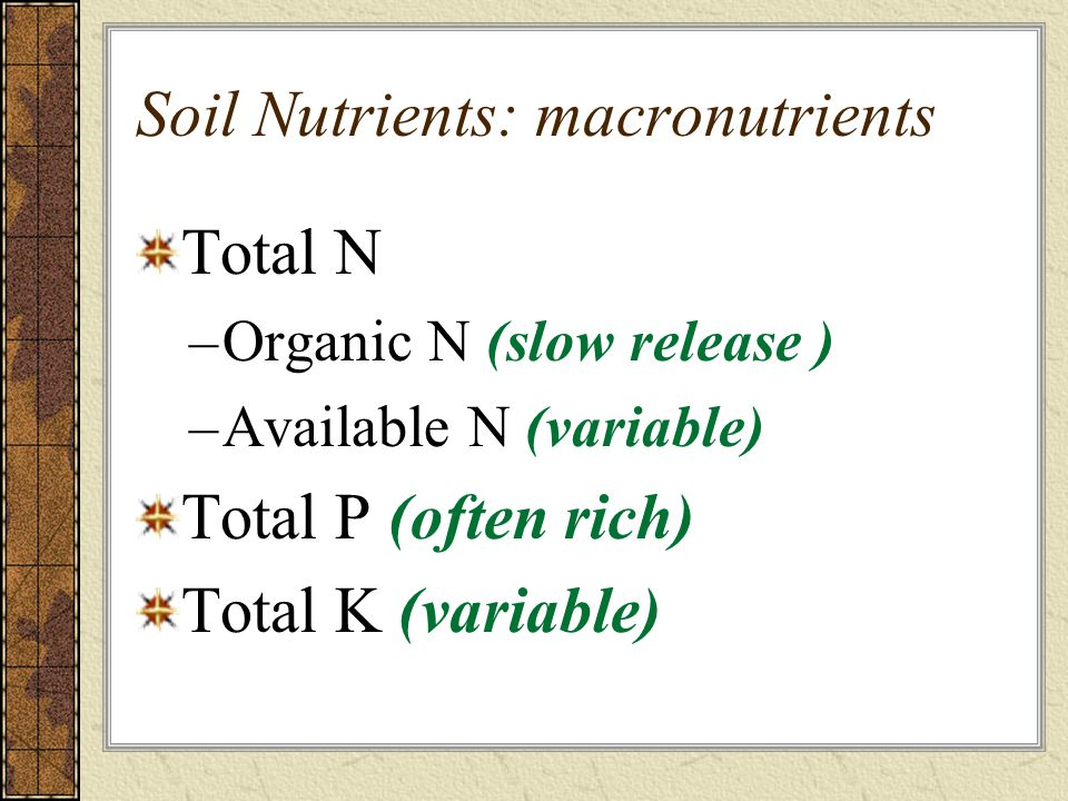 Soil Nutrients: macronutrients Total N –Organic N (slow release ) –Available N (variable) Total P (often rich) Total K (variable)