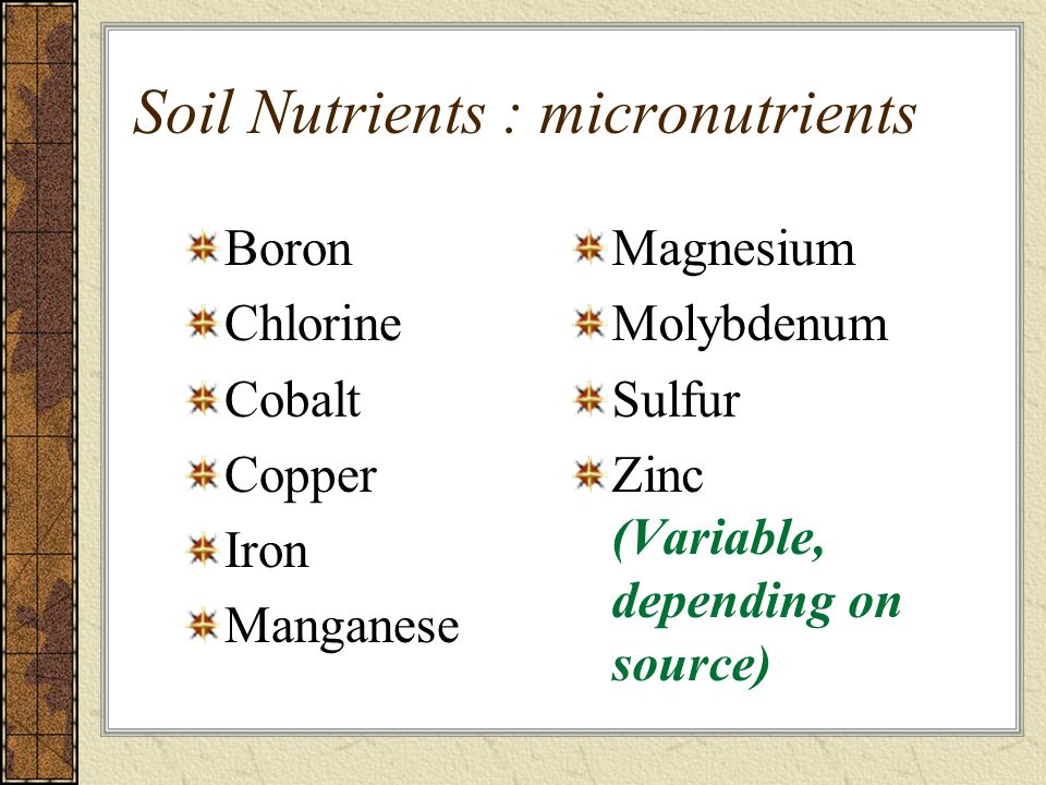 Soil Nutrients : micronutrients Boron Chlorine Cobalt Copper Iron Manganese Magnesium Molybdenum Sulfur Zinc (Variable, depending on source)