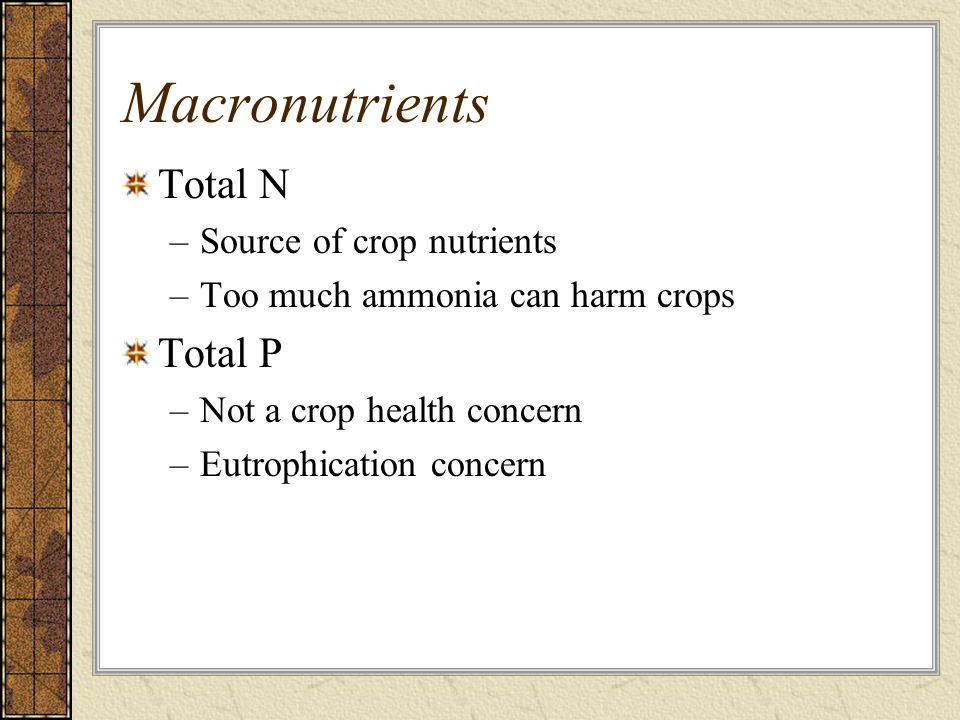 Macronutrients Total N –Source of crop nutrients –Too much ammonia can harm crops Total P –Not a crop health concern –Eutrophication concern