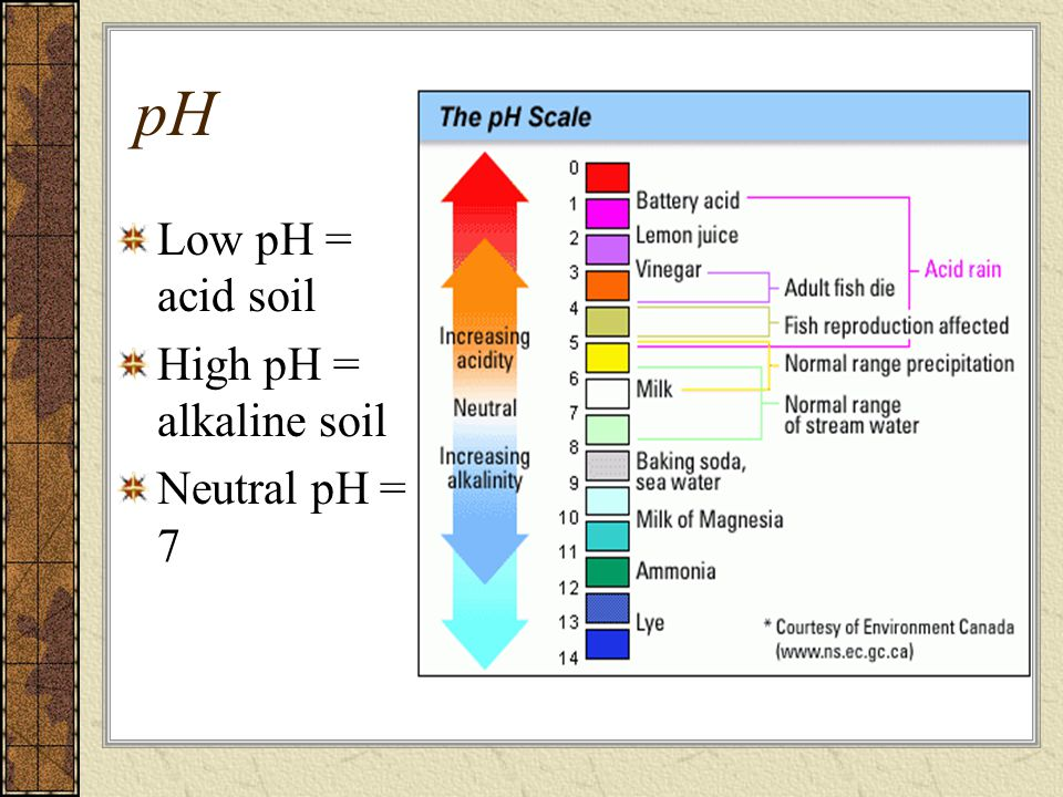 Low pH = acid soil High pH = alkaline soil Neutral pH = 7