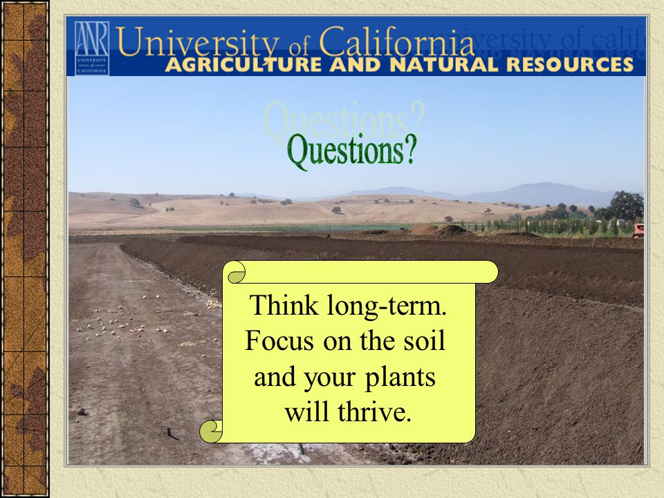 Think long-term. Focus on the soil and your plants will thrive.