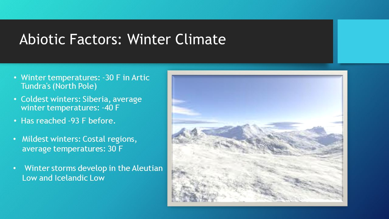 Abiotic Factors: Winter Climate Winter temperatures: -30 F in Artic Tundra's (North Pole) Coldest winters: Siberia, average winter temperatures: -40 F