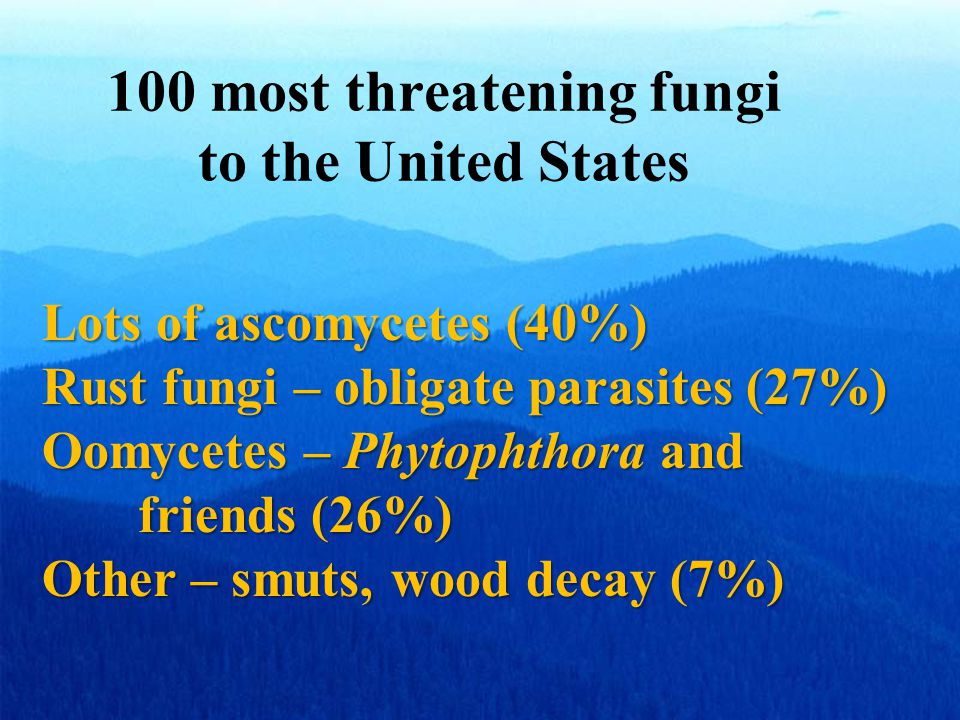 100 most threatening fungi to the United States Lots of ascomycetes (40%) Rust fungi – obligate parasites (27%) Oomycetes – Phytophthora and friends (26%) Other – smuts, wood decay (7%)