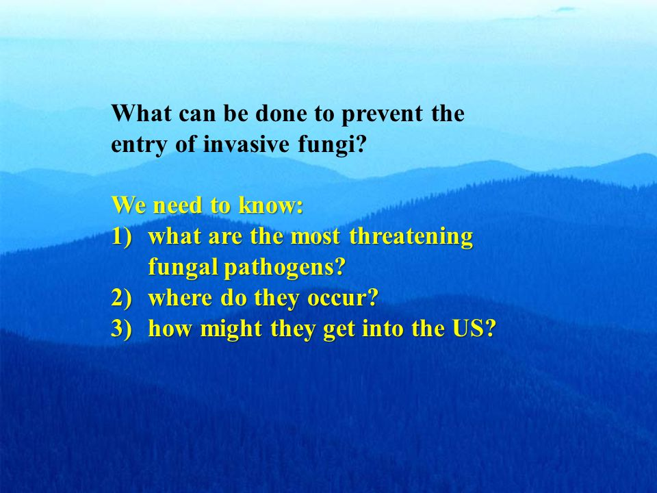 What can be done to prevent the entry of invasive fungi.