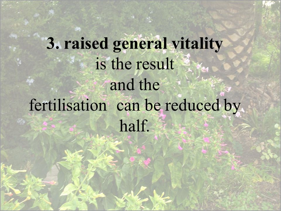 3. raised general vitality is the result and the fertilisation can be reduced by half.
