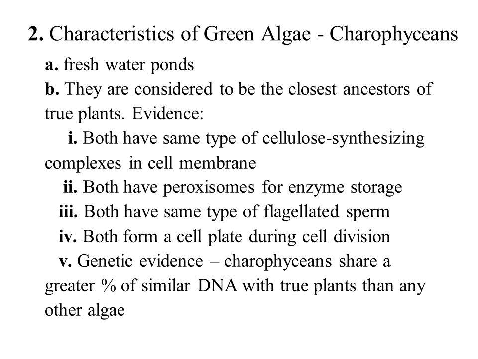 4.Multicellular gametangia a.