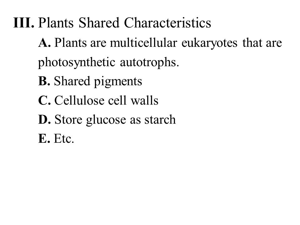 5.Multicellular, dependent embryos a.