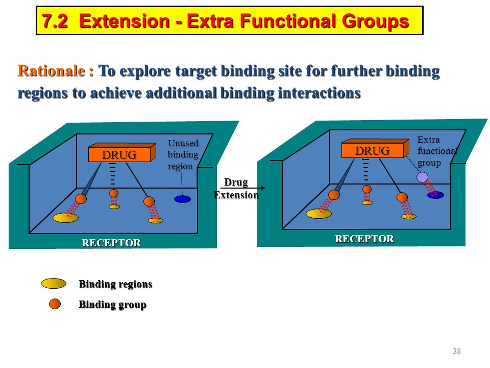 RECEPTOR Rationale : To explore target binding site for further binding regions to achieve additional binding interactions 7.2 Extension - Extra Funct