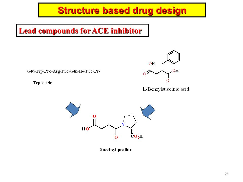 95 Structure based drug design Lead compounds for ACE inhibitor