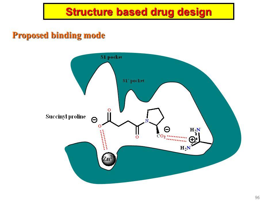 Proposed binding mode 96 Structure based drug design