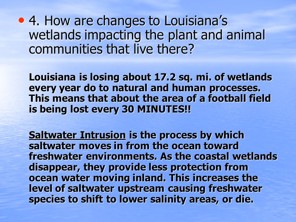 4. How are changes to Louisiana's wetlands impacting the plant and animal communities that live there? 4. How are changes to Louisiana's wetlands impa