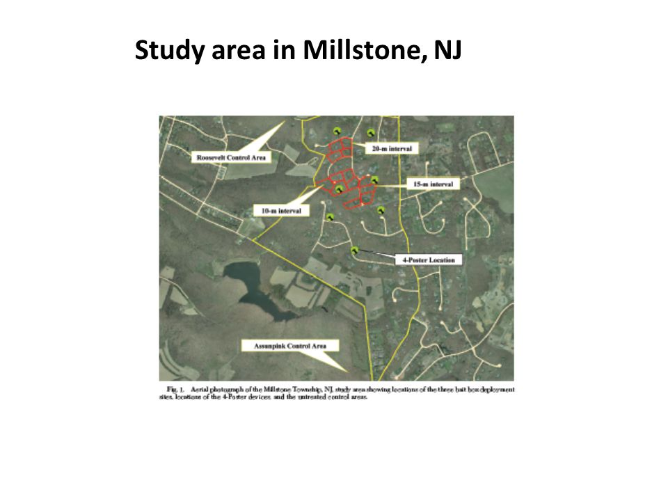 Study area in Millstone, NJ