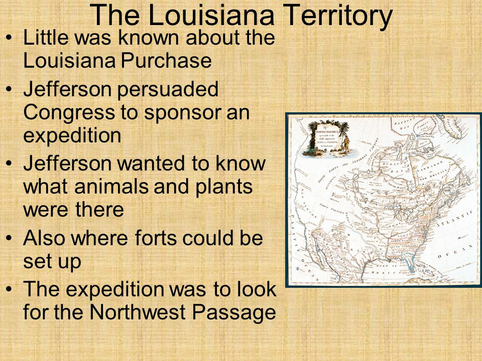 The Louisiana Territory Little was known about the Louisiana Purchase Jefferson persuaded Congress to sponsor an expedition Jefferson wanted to know what animals and plants were there Also where forts could be set up The expedition was to look for the Northwest Passage