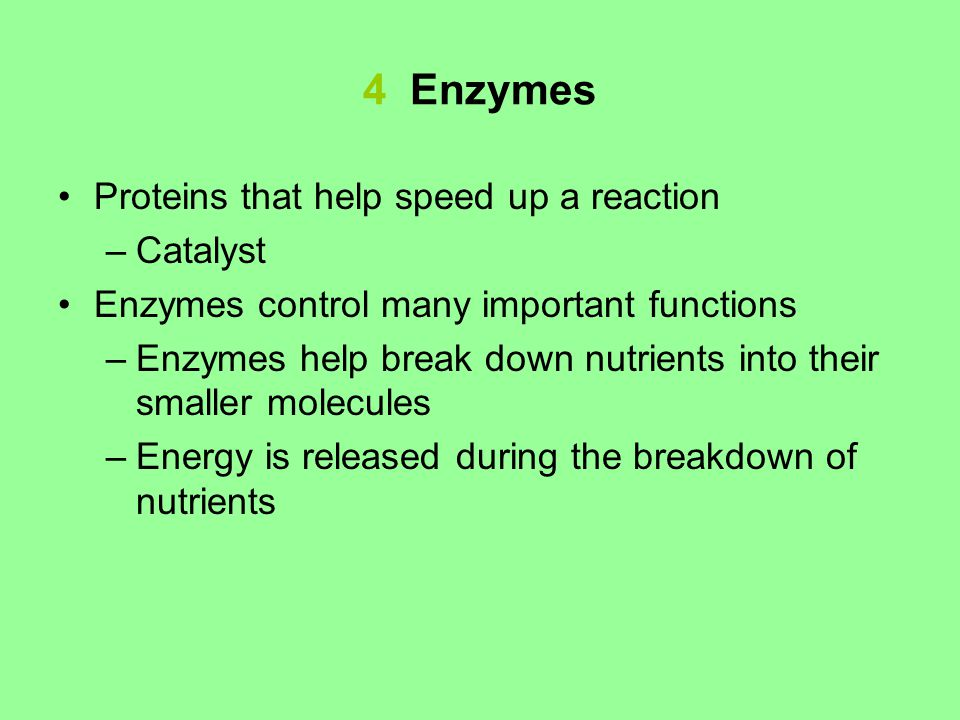 4 Enzymes Proteins that help speed up a reaction –Catalyst Enzymes control many important functions –Enzymes help break down nutrients into their smaller molecules –Energy is released during the breakdown of nutrients