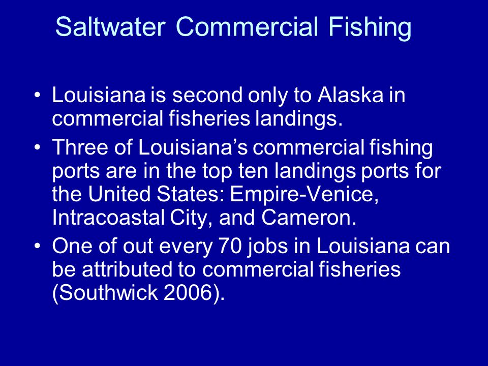 Saltwater Commercial Fishing Dockside Value$264,960,224 Retail Sales$1,761,885,471 Total Economic Impact $2,349,180,628 Jobs Supported26,345 State and Local Tax Revenues $166,923,916