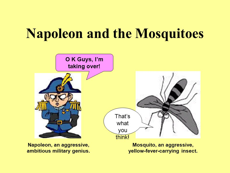 Napoleon and the Mosquitoes Napoleon, an aggressive, ambitious military genius. Mosquito, an aggressive, yellow-fever-carrying insect. O K Guys, I'm t