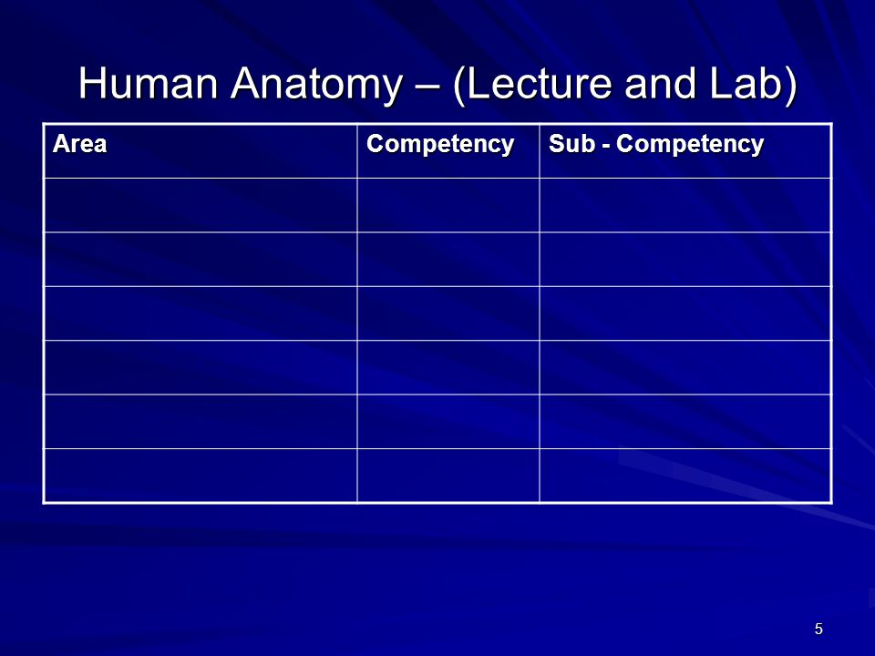 5 Human Anatomy – (Lecture and Lab) AreaCompetency Sub - Competency