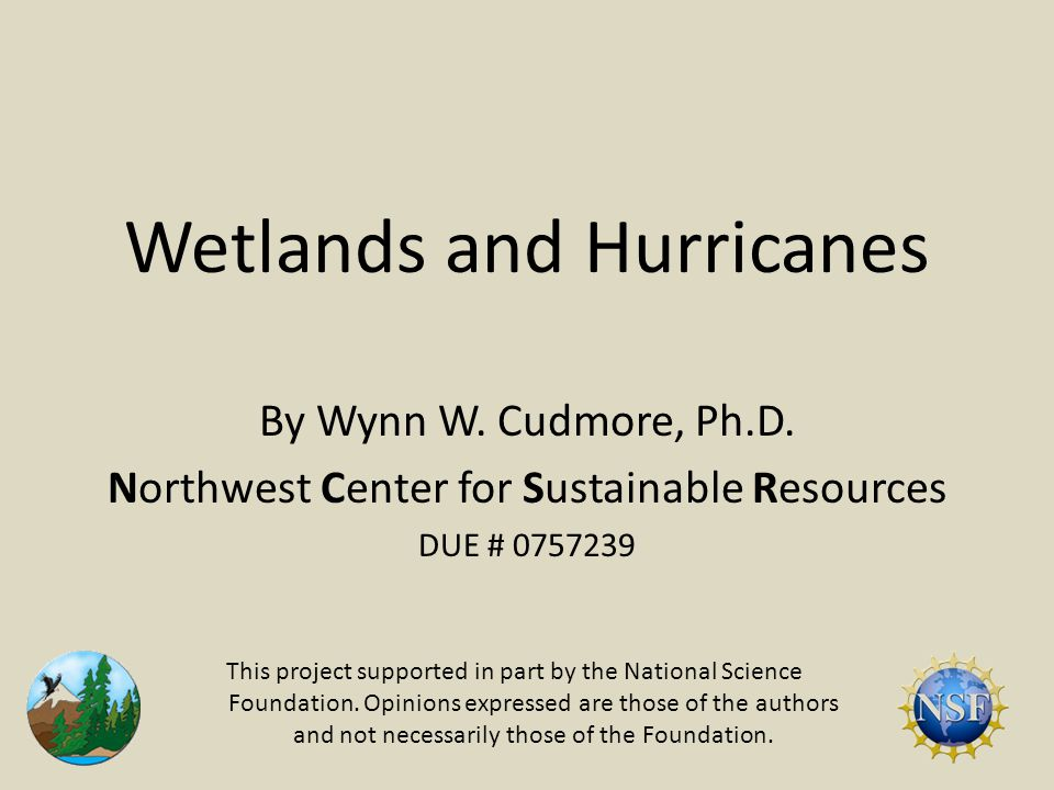 Wetlands and Hurricanes Hurricane Gustav 25 August – 1 September 2008