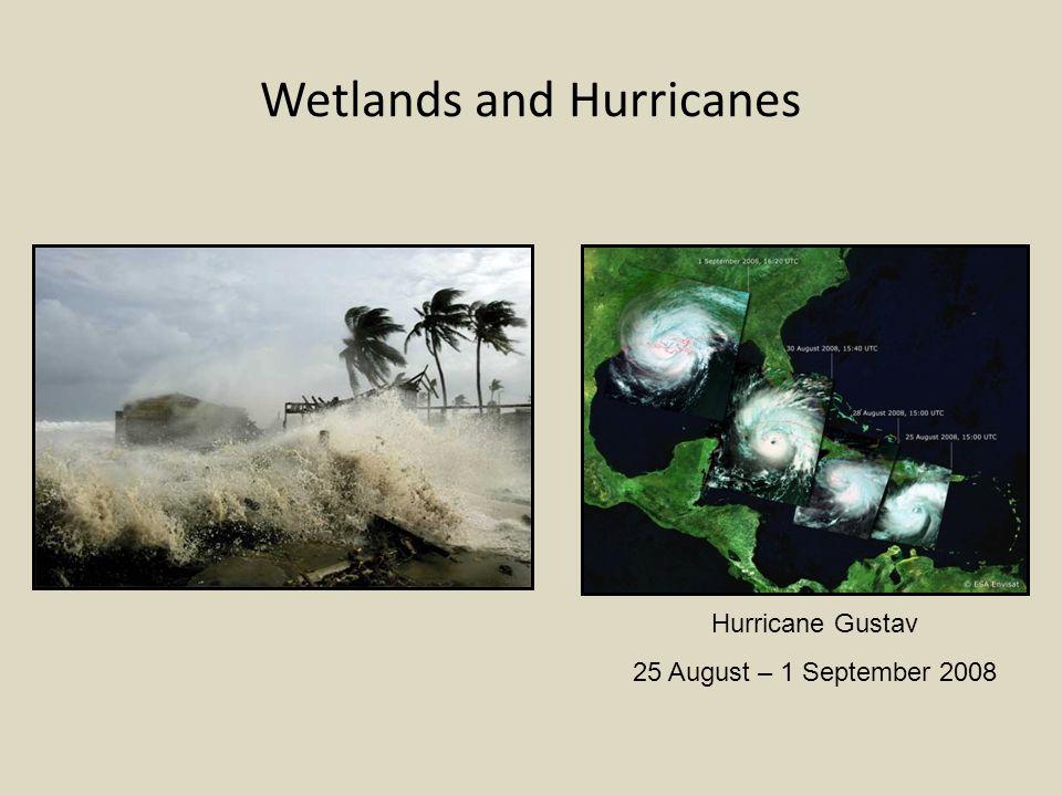 Wetlands and Hurricanes Hurricane Gustav 25 August – 1 September 2008