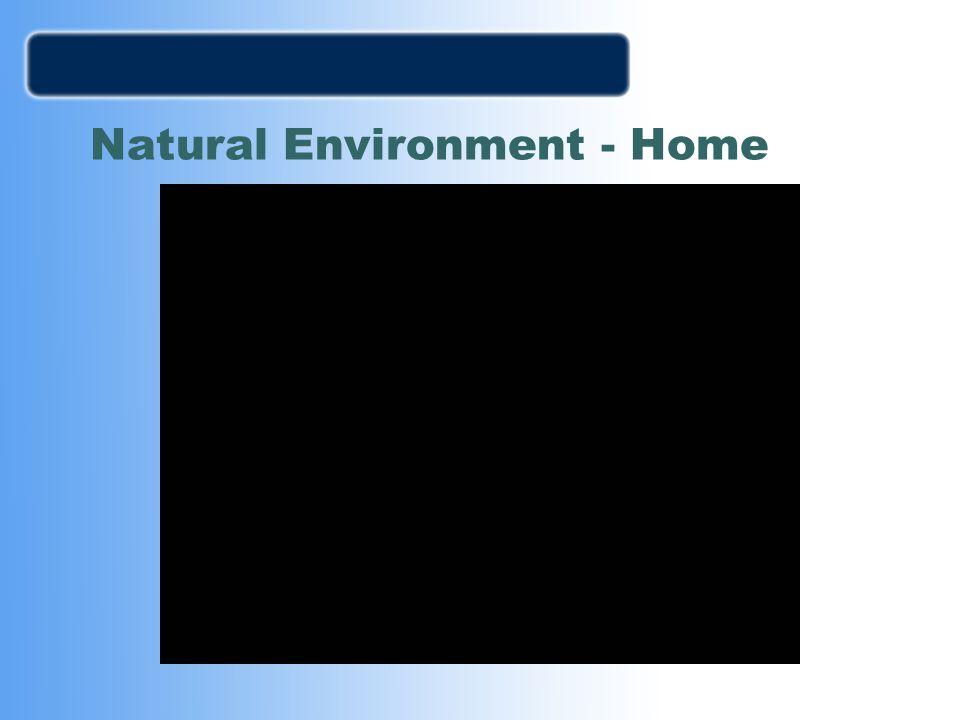 Natural Environment - Home