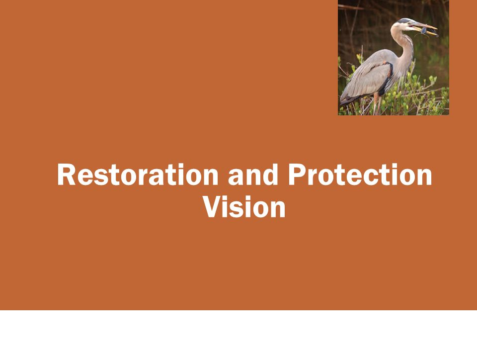 Restoration and Protection Vision