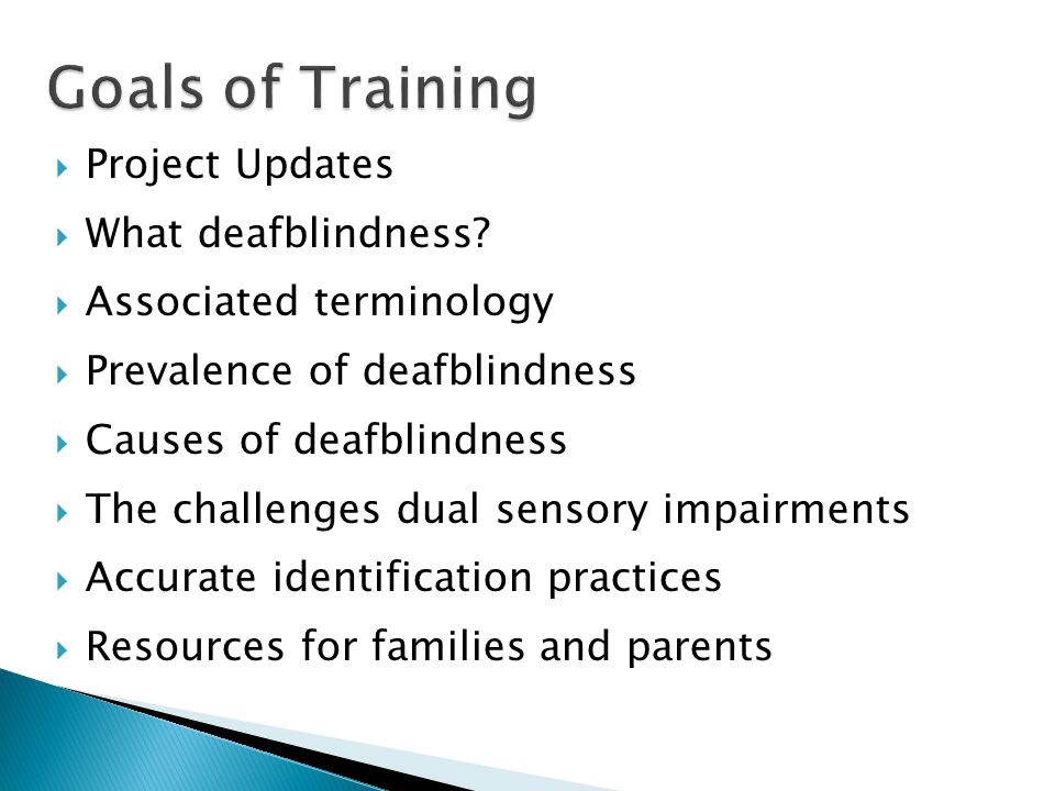  Project Updates  What deafblindness.