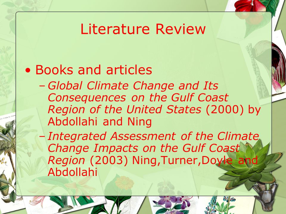 Literature Review Books and articles –Global Climate Change and Its Consequences on the Gulf Coast Region of the United States (2000) by Abdollahi and Ning –Integrated Assessment of the Climate Change Impacts on the Gulf Coast Region (2003) Ning,Turner,Doyle and Abdollahi