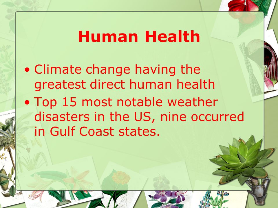 Human Health Climate change having the greatest direct human health Top 15 most notable weather disasters in the US, nine occurred in Gulf Coast states.