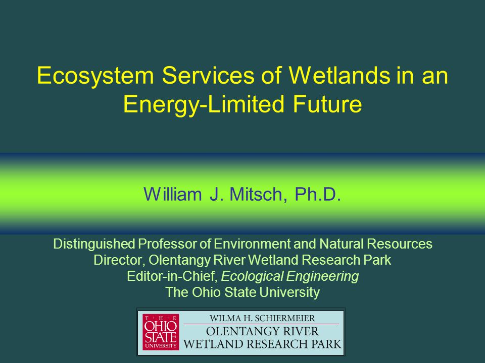 Ecosystem Services of Wetlands in an Energy-Limited Future William J.